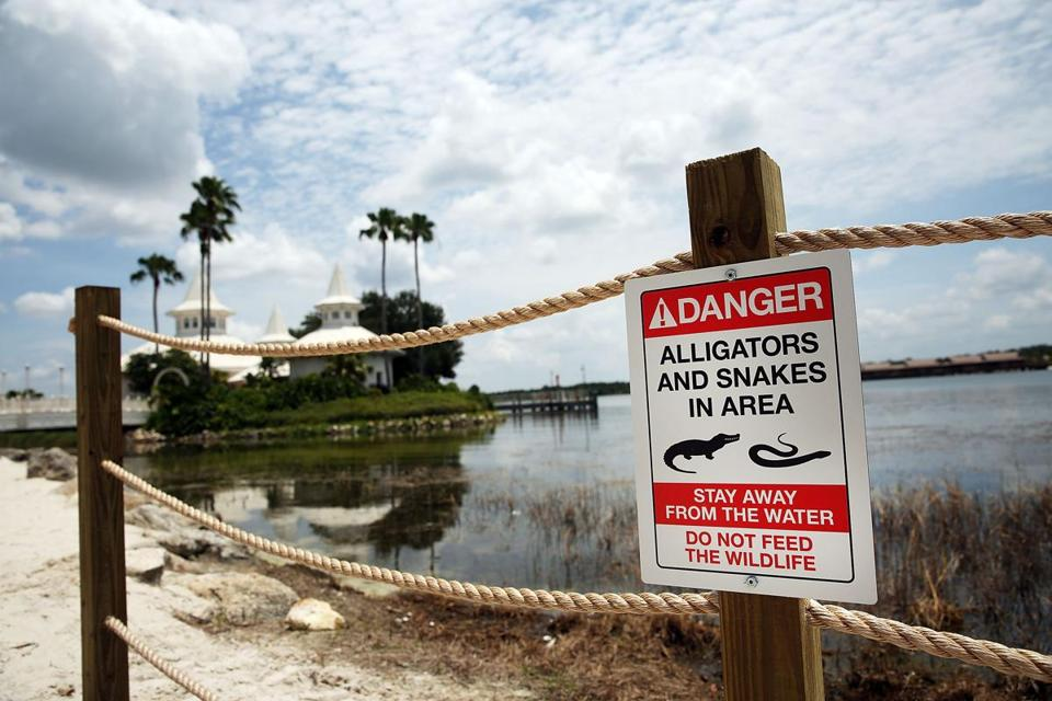 Signs warn of alligators and snakes near Seven Seas Lagoon.