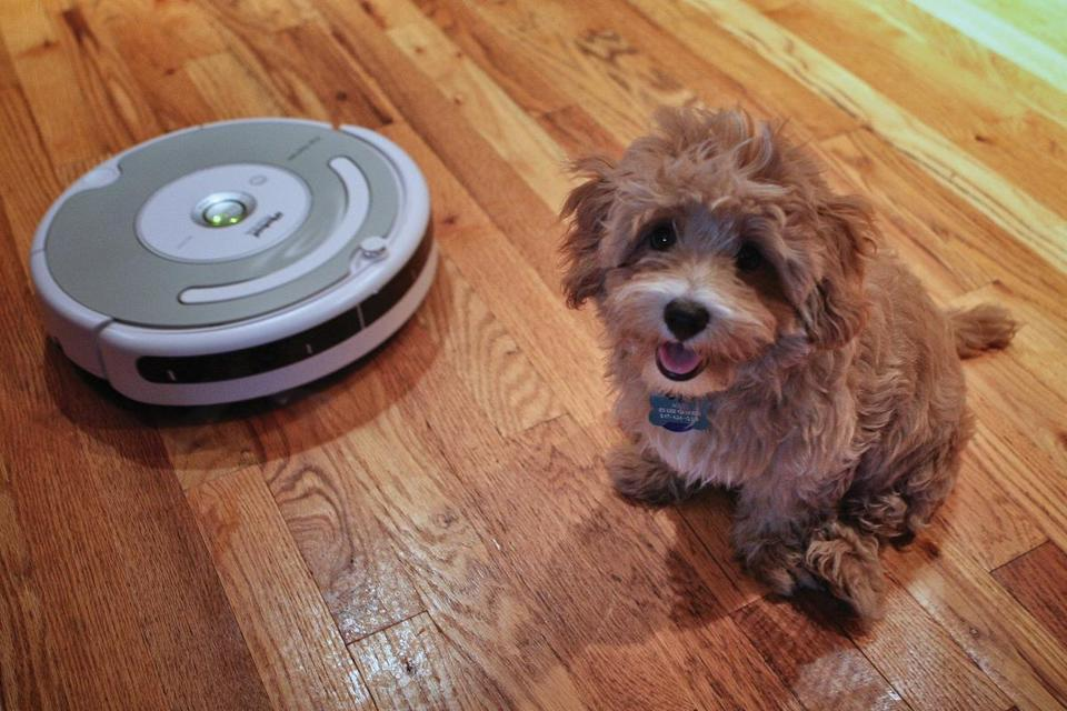 The Roomba has become a part of families almost as much as pets, even to the point of people naming their vacuum bots.