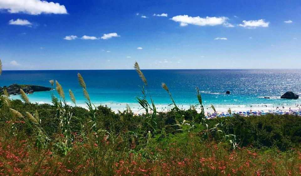 Elbow Beach has gotten busier — and younger. Bermuda has seen double-digit growth in the number of visitors under 45.