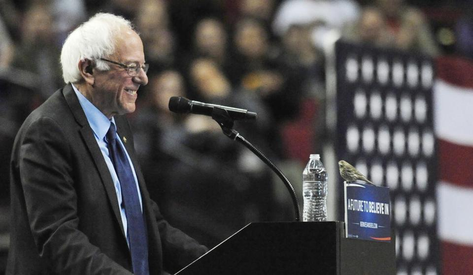 Bernie Sanders smiled as a bird landed on his podium at a Portland, Oregon rally in March.