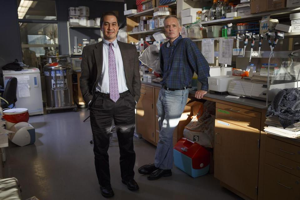 Boston, MA - 11/11/2016 - Zika researchers Jim Collins(R) and Dan Barouch pose for a portrait in a lab at the Center for Life Sciences in Boston, MA on November 11, 2016. (Keith Bedford/Globe Staff) Topic: Reporter: