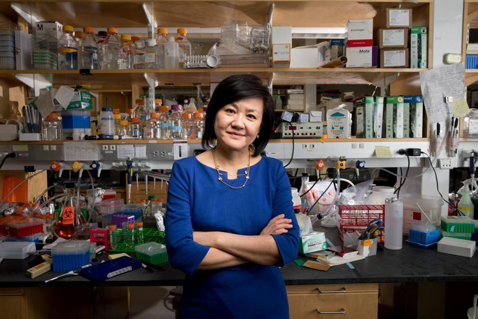 MIT professor Li-Huei Tsai at her lab in Cambridge.