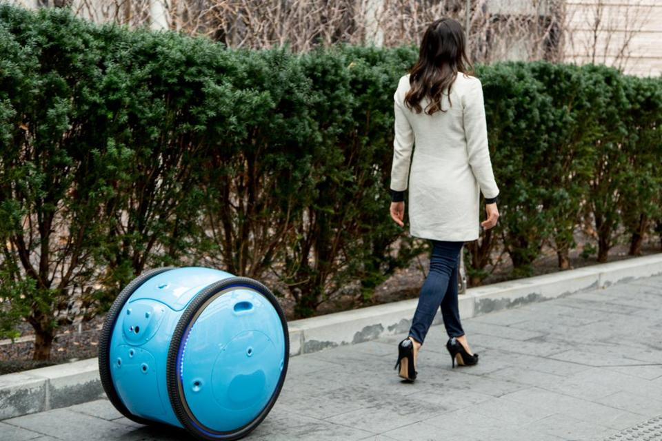 Piaggio, an Italian company, is developing a cargo robot named Gita that could collect and carry groceries for shoppers.