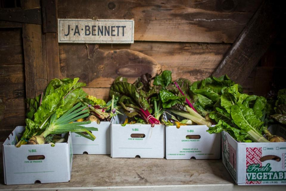 Produce at Saltbox Farm in Concord.