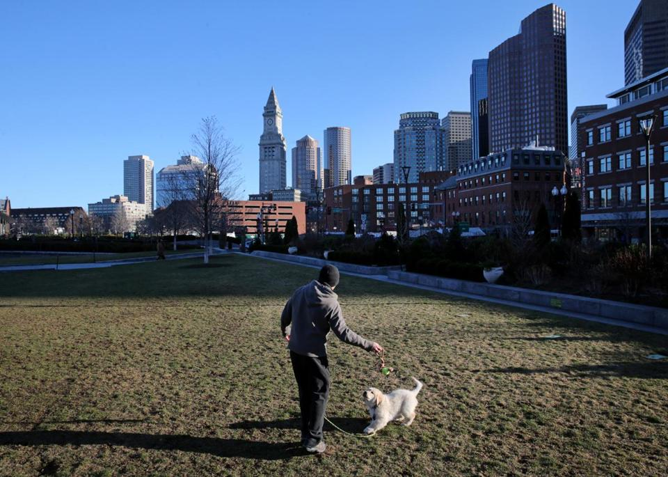 A man and his puppy played on the Rose Fitzgerald Kennedy Greenway in Boston earlier this month.