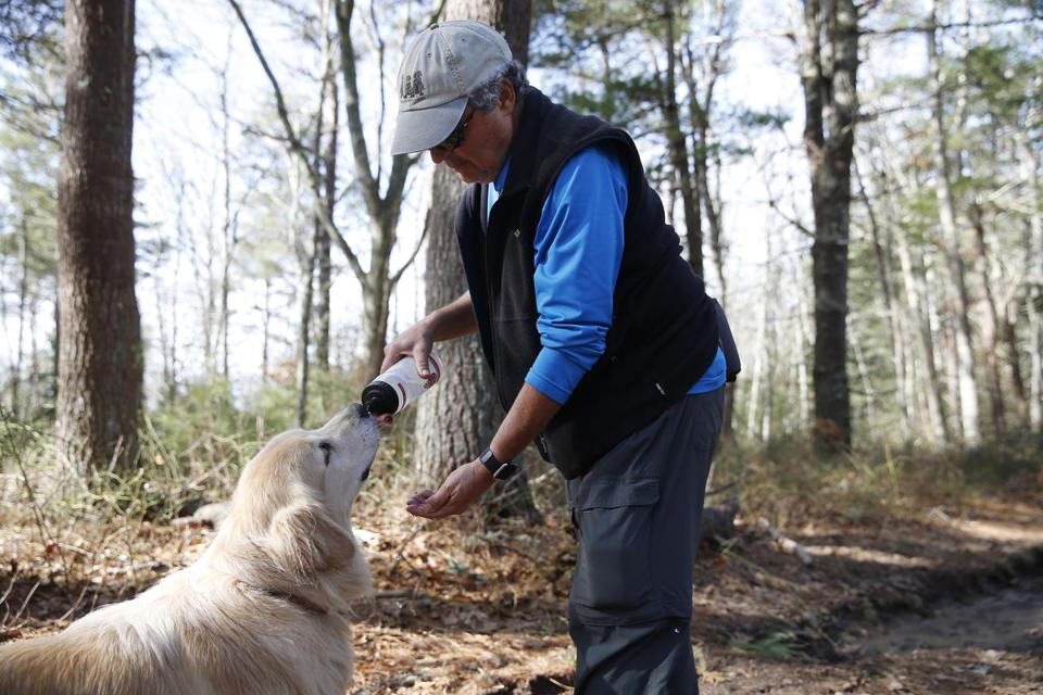 Dr. Roger Kligler stopped to give his dog, Bodie, a drink of water during a hike in the Falmouth woods.