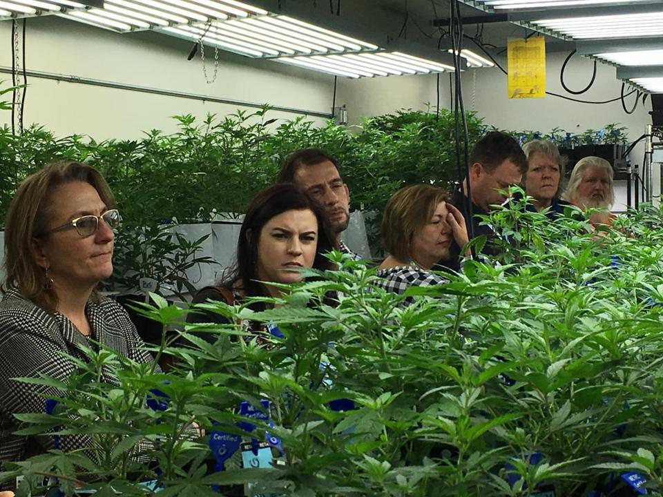 Agriculture regulators from seven states and Guam toured a Denver marijuana growing warehouse in January.