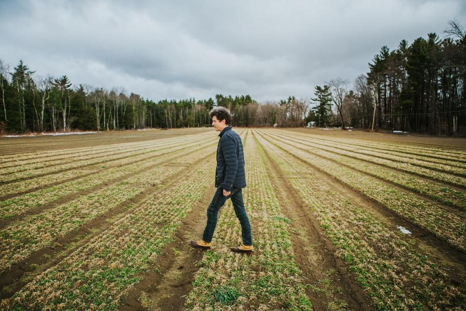 Ted Dobson walks a field on his farm in Sheffield that he hopes will someday be filled with marijuana plants.