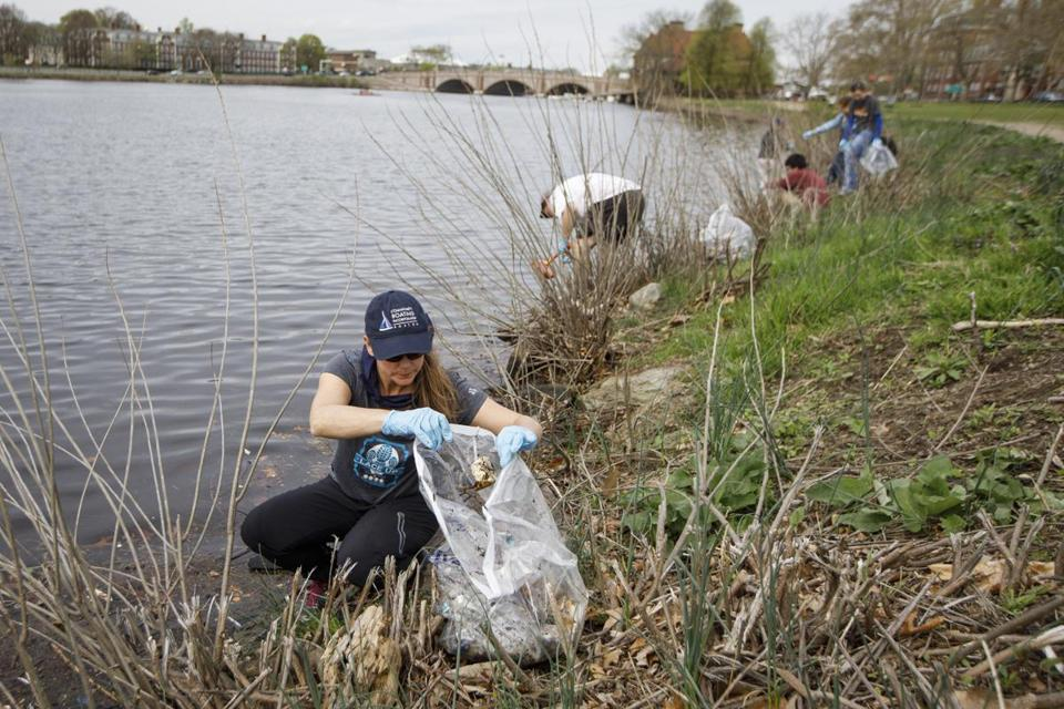 Cambridge, MA - 4/29/2017 - Volunteers clean garbage and debris from the Charles River in Cambridge, MA, April 29, 2017. Over 150 volunteers from the Boston Aquarium's innovative environmental service projects joined coastal cleanups through parts of the state.