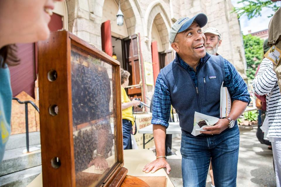 Former governor Deval Patrick examined a hive during the Langstroth Bee Fest held at the Second Congregational Church in Greenfield.
