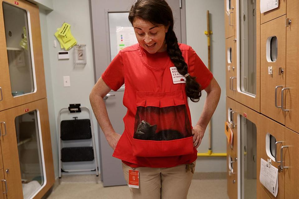 At the Animal Rescue League of Boston's Dedham location, Amanda McGuire held a feral kitten in a vest pouch. This technique helps to socialize feral kittens.