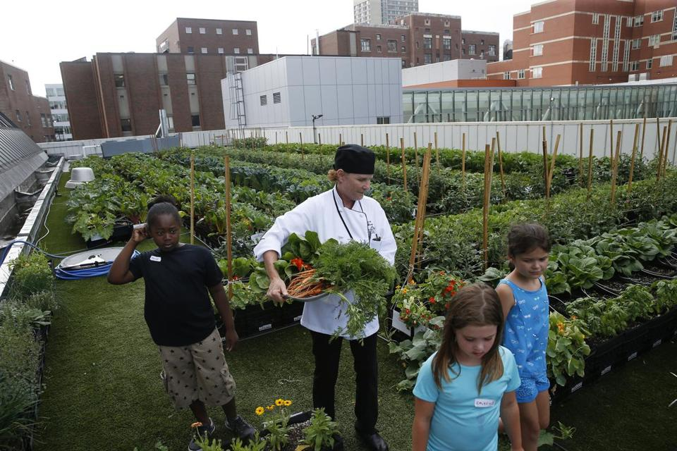 Tracey Burg (center) carried a tray of freshly picked vegetables at the Boston Medical Center's rooftop farm, as she and campers from BMC's summer culinary camp headed to the kitchen.