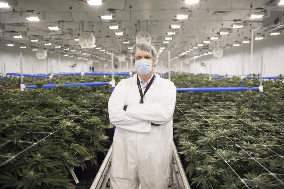 Joe Brezny, a marijuana industry consultant, sees cannabis lounges as the missing piece in the industry.