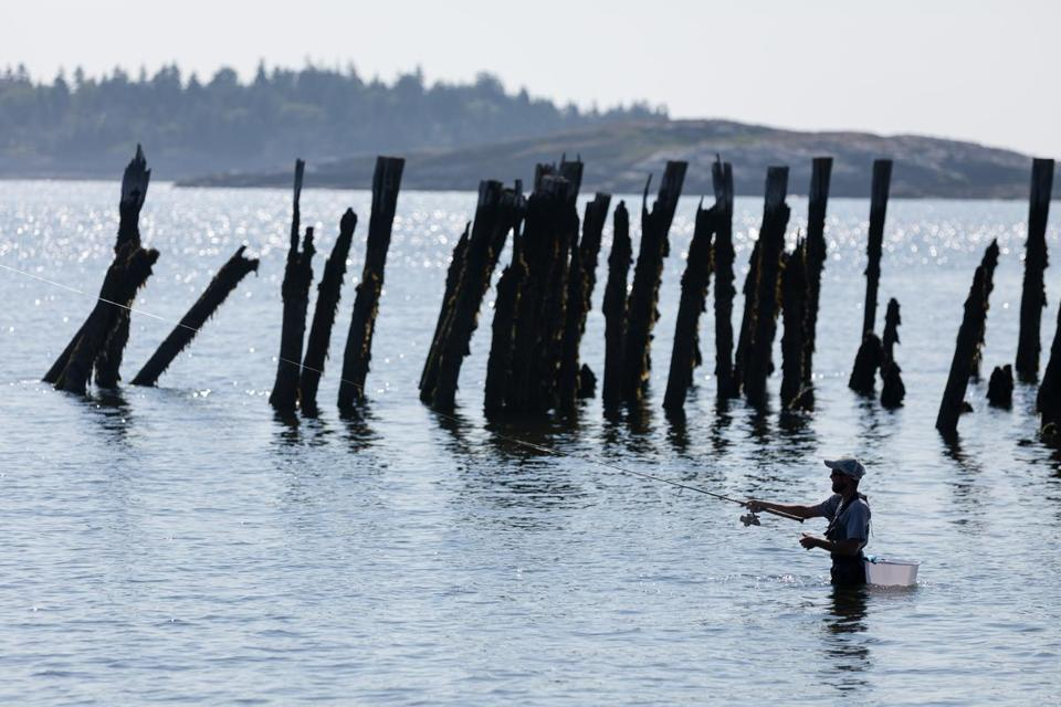 Chad Costello tried his luck near old wharf pilings off Popham Beach in Maine.
