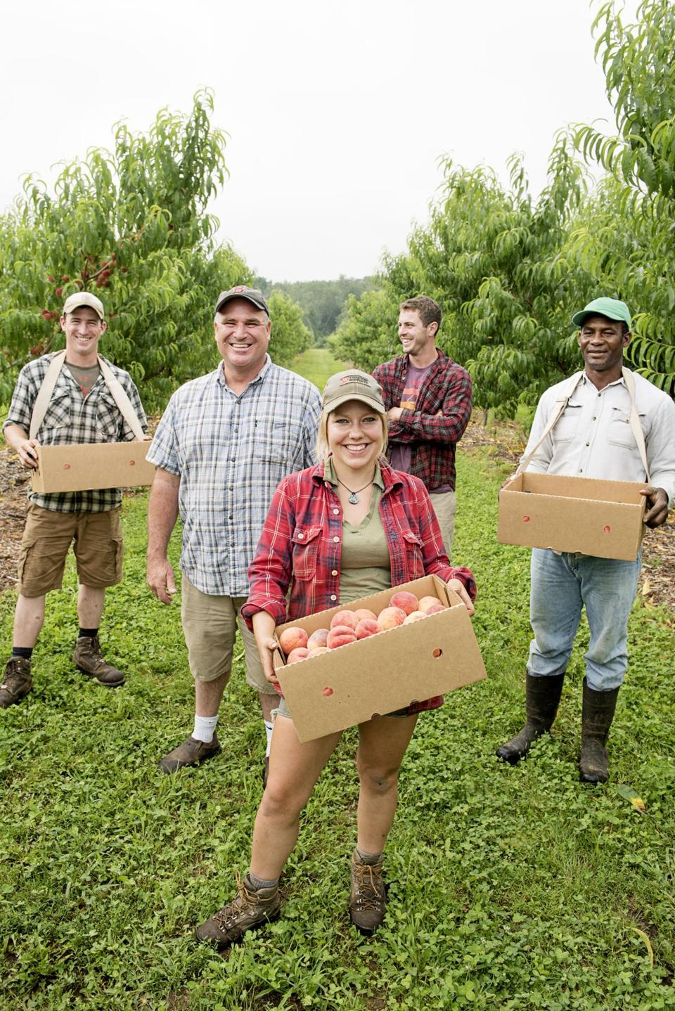 Jim Ward of Ward's Berry Farm is a fan of peaches fresh from the tree. Ward (second from left) with employees at farm.