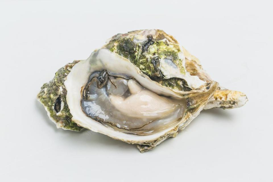 As you open your container of shucked oysters to make purloo, it may be tempting to pop one into your mouth. That's not a good idea, according to Joe Damaso of Court House Seafood in Cambridge, who says raw oysters must be eaten within  two hours after they're shucked. Unless you're absolutely certain that's the case, don't eat them raw.