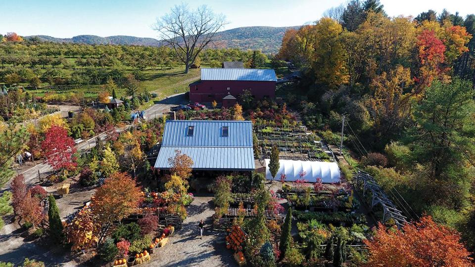 Windy Hill Farm in Great Barrington.