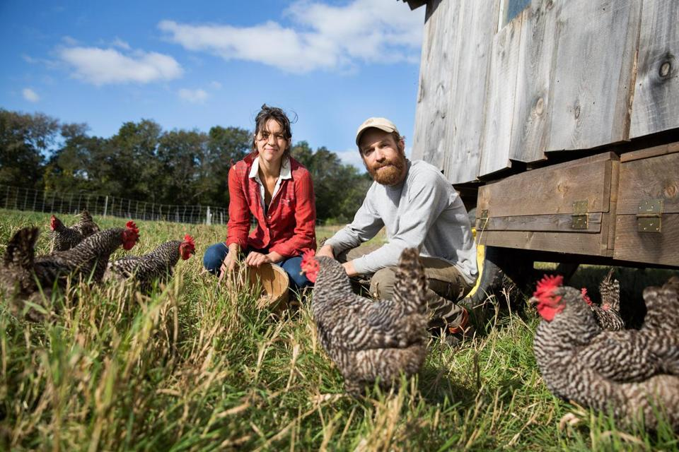 Raynham, MA -- 10/12/17 -- Farmers Marie Kaziunas (left), and Chuck Currie, pose for a portrait with their chickens, at Freedom Food Farm, on October 12, 2017, in Raychem, Massachusetts. (Kayana Szymczak for The Boston Globe)