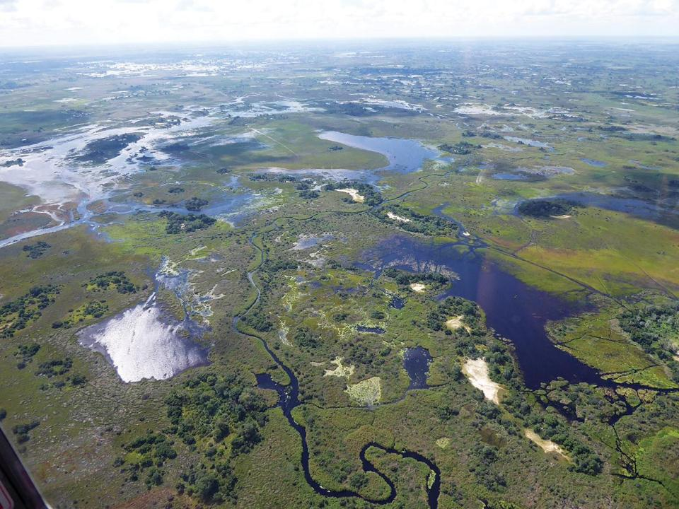 The Okavango Delta, seen from a small plane flying between safari camps, is one of Africa's most significant wildlife habitats.