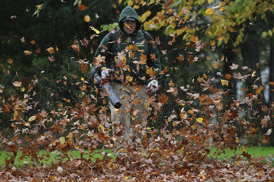 Newton, MA., 11/07/17, A leaf-blowing landscaper disappears behind a tornado of leaves. Leaf blowers in Newton are causing controversy. Suzanne Kreiter/Globe staff