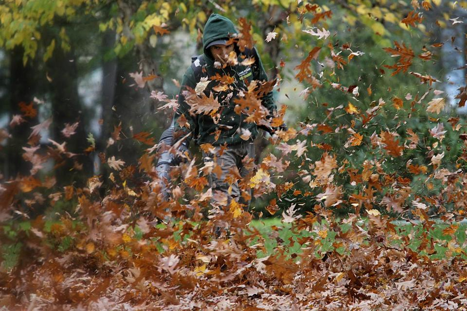 the city of newton is at war over leaf blowers the boston globe