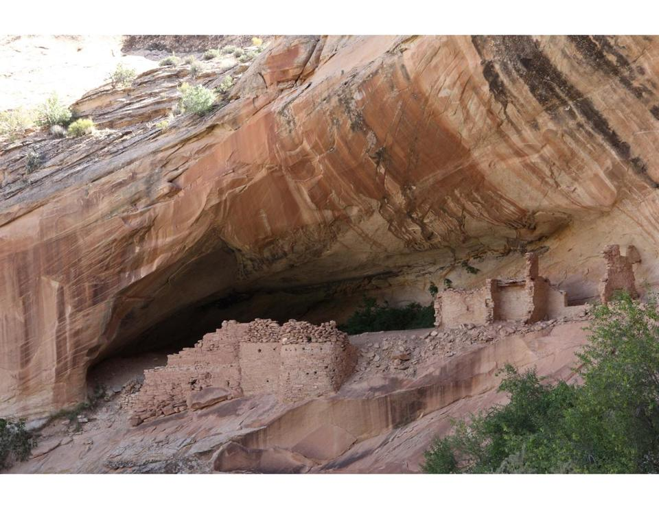 The Monarch ruin sits half hidden in the shadow of a large canyon alcove at Bears Ears National Monument.