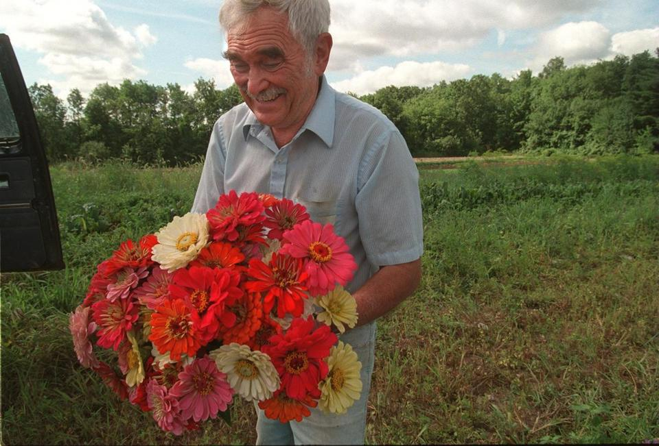 8/14/97--GERRY'S FARM BROCKTON ---Joseph George Gerry is pleased with the previous night's rain, his flowers look beautiful.