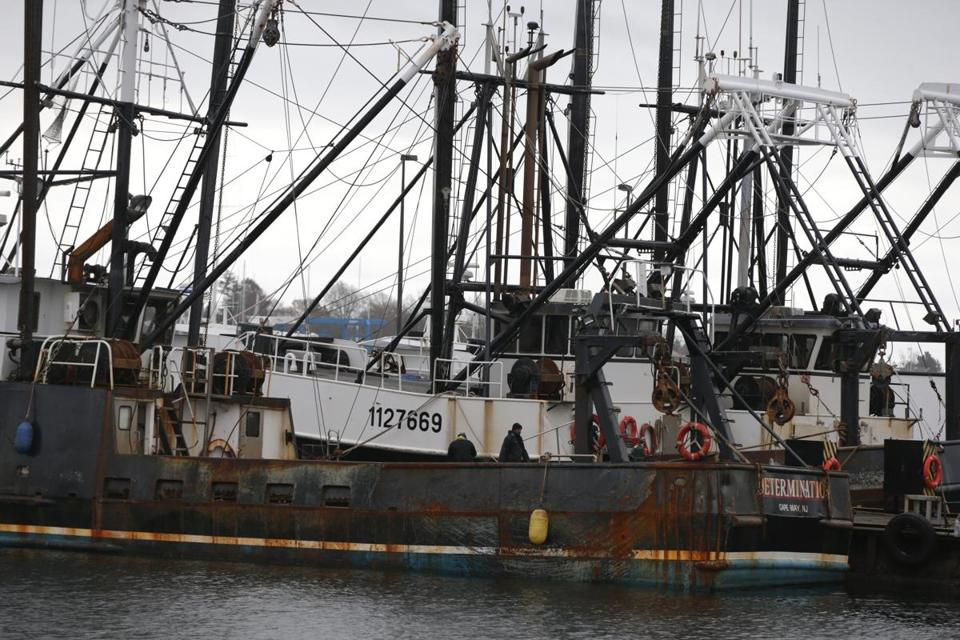 Fishing boats were tied up Tuesday in Fairhaven.