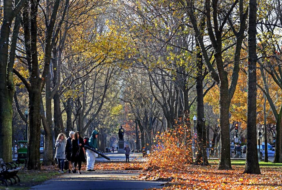 BOSTON, MA - 12/06/2017: A view of the Commonwealth Avenue Mall in Boston. Leaves are still around looking more like an October Fall than a December (David L Ryan/Globe Staff ) SECTION: METRO TOPIC