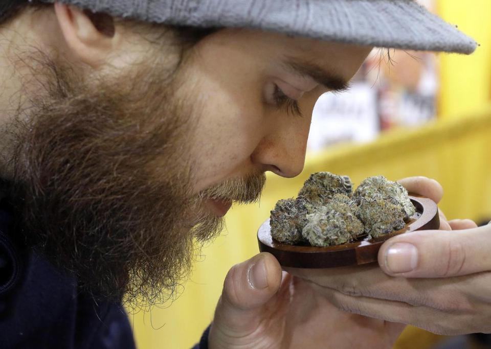 "Julian Clark smelled a strain of marijuana flowers at the ""Harvest Cup"" trade show in Worcester last month."