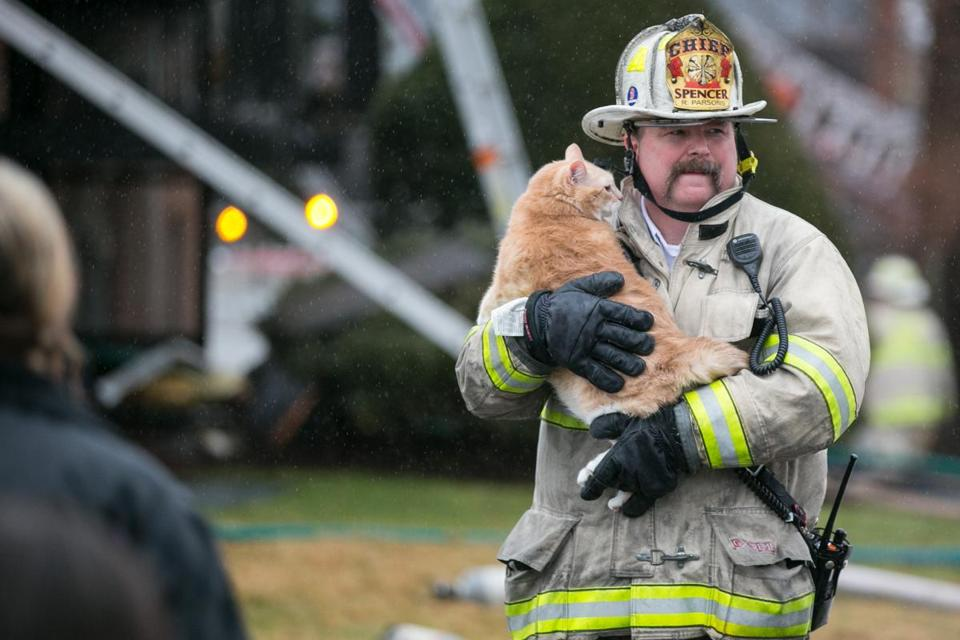 Spencer fire Chief Bob Spencer carried Mama Bear the cat from an apartment building fire at 176 Maple Ave. in Rutland on Friday.