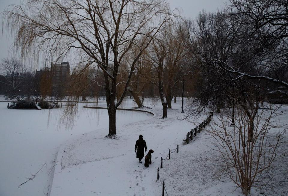 A woman walked her dog in the snow Wednesday morning in Boston's Public Garden.