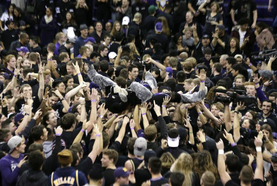 Washington fans got carried away with mascot Harry the Husky after the team's 78-75 win over Arizona Saturday night.