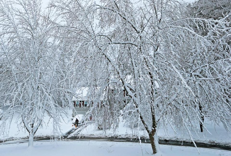 Heavy snow covered the trees as Bill Bennett cleared his driveway on Spring Valley Road in Methuen on Thursday.