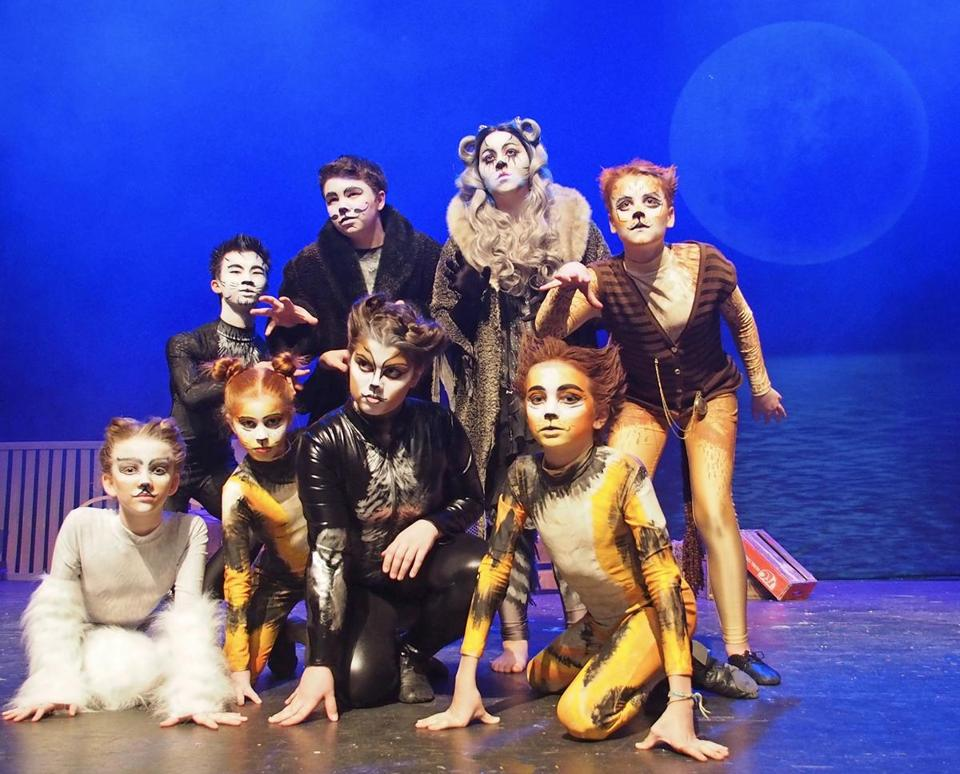 "The Company Theatre's cast in the classical musical ""Cats."""