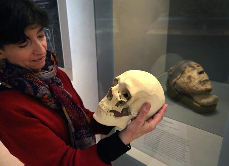 BOSTON, MA - 4/12/2018: At the Museum of Fine Arts Boston, Rita Freed (the MFA's John F. Cogan Jr. and Mary L. Cornille Chair, Art of the Ancient World) holds a resin model of a skull, used to practice the removal of a tooth from the mummified head of governor Djehutynakht (seen in the background). The FBI has solved the mystery of the identity a 4,000-year-old mummy, after extracting DNA from its tooth. Despite deciphering that the tomb belonged to a governor named Djehutynakht and his wife, they have long deliberated over whose head it was. (David L Ryan/Globe Staff ) SECTION: METRO TOPIC 17MummyHead