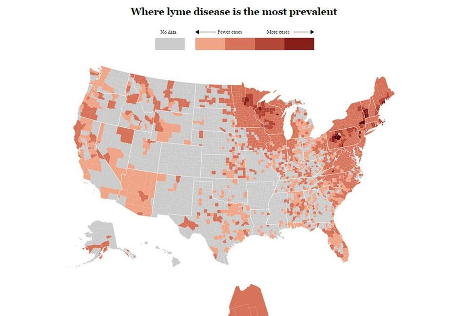 Lyme Disease Usa Map.Mass Counties Have Some Of The Highest Rates Of Lyme Disease In The