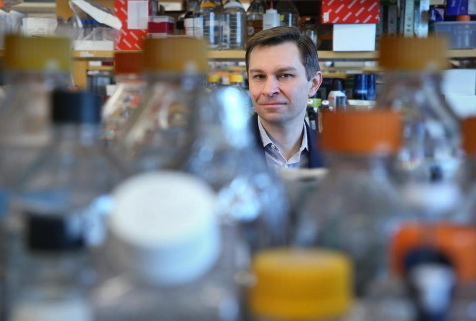 David Sinclair, professor of genetics and director of the Paul F. Glenn Center for the Biology of Aging, has been working on triggering an anti-aging enzyme called SIRT1.