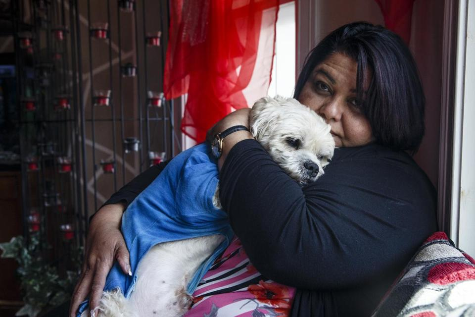 """Now my dog is back in my house,"" Amarilys Martinez said. ""He's my dog. He's my child. He's part of my family."""
