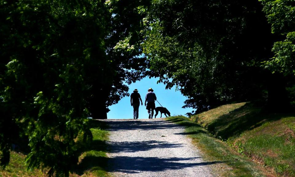 HINGHAM, MA - 6/21/2018: A path leads up to the top of a hill at World's End park in Hingham (David L Ryan/Globe Staff ) SECTION: METRO TOPIC 25worldsend