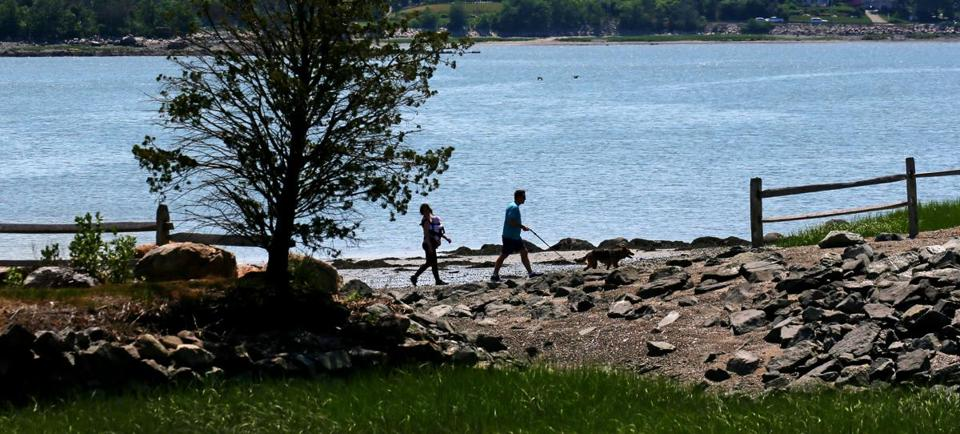 At World's End, a peninsula in Hingham 15 miles south of Boston, wooded trails mingle with a beautiful harbor view.