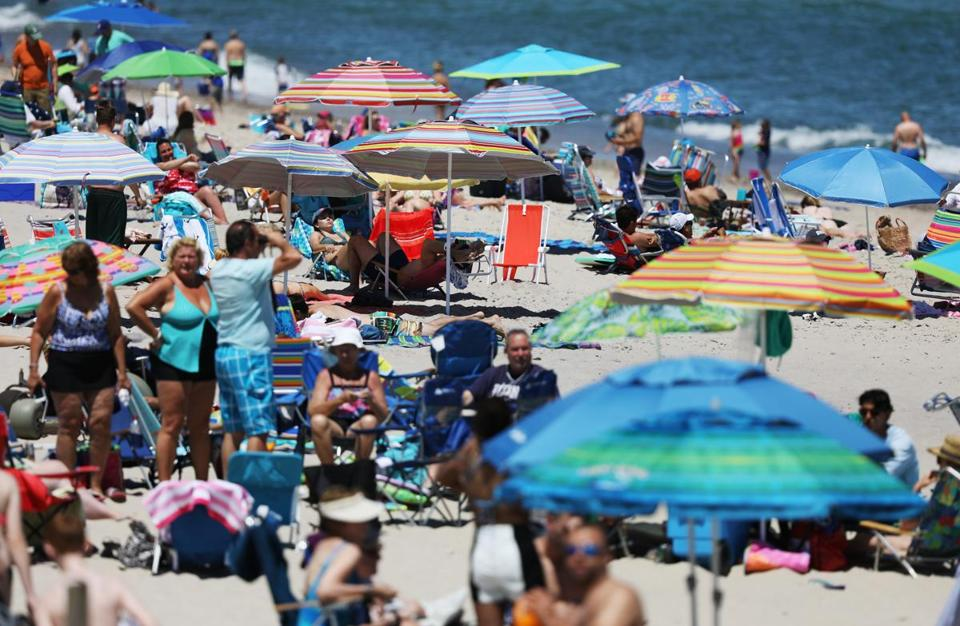 On The Cape Tourists And Locals Take Sharks In Stride The Boston