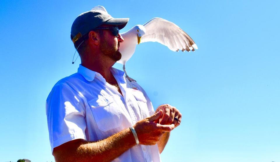 A friendly seagull on the Schooner Thomas E. Lannon.