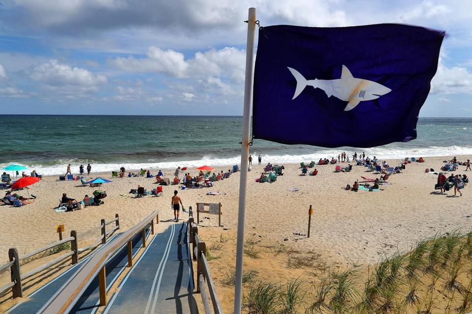Orleans 08 31 18 A Shark Flag S In The Wind At