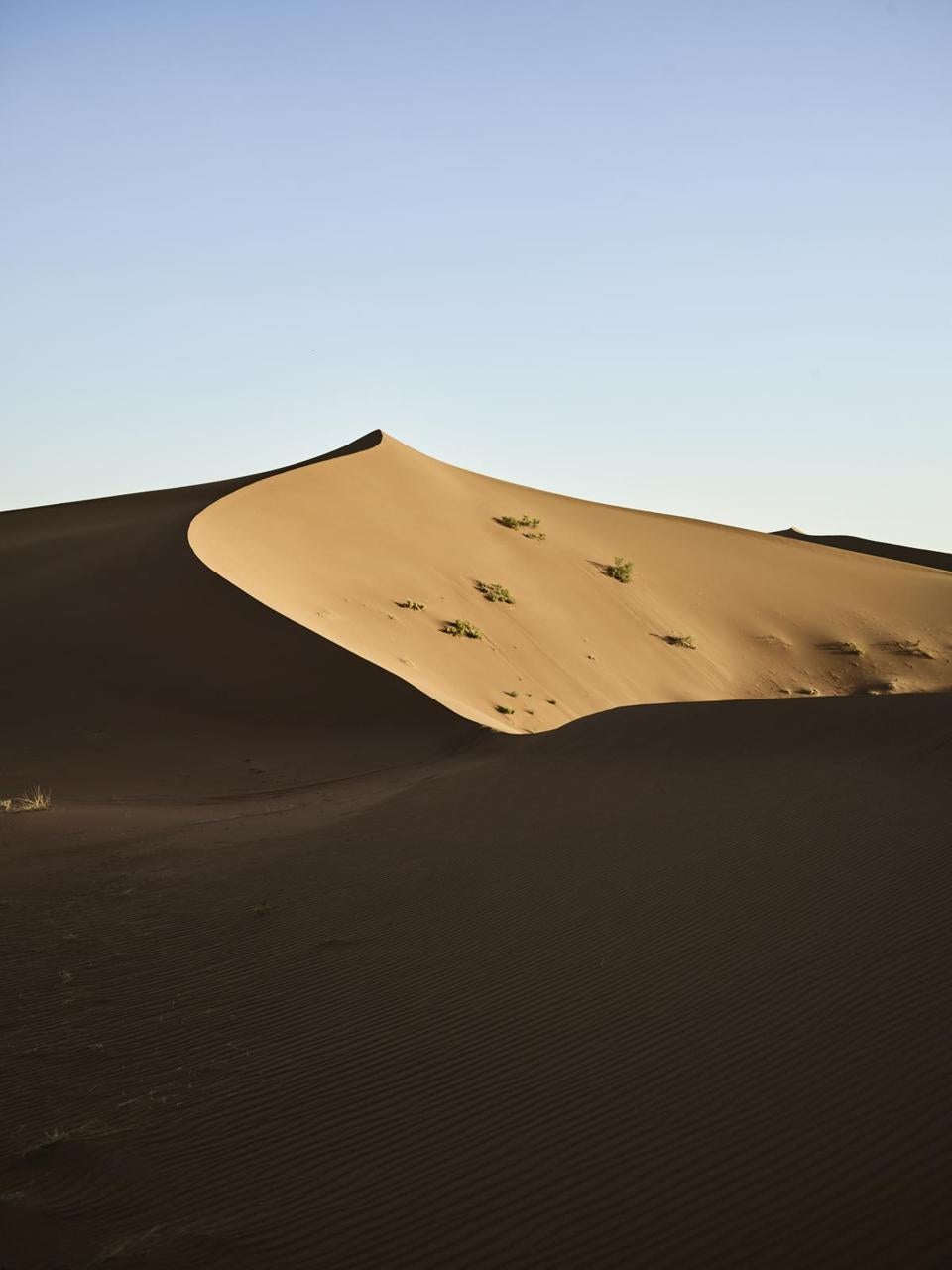 A towering dune in the Moroccan Sahara.