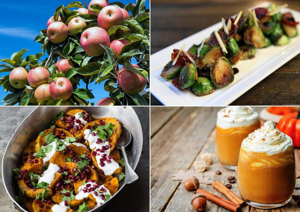 Apples? Brussels sprouts? Pumpkin spice? Squash? Must be fall in New England.