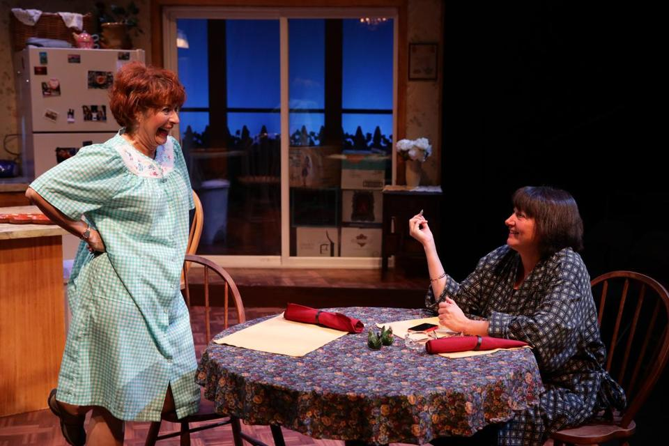 "Paula Plum (left) and Adrianne Krstansky in Lyric Stage Company's production of ""The Roommate."""