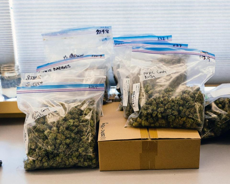 Bags of cannabis before being divided for sale at a dispensary in Vancouver, Canada, on Oct. 9, 2018. Canada is running low on legal pot three weeks after the government approved the use of recreational marijuana, a shortage that is sending some frustrated consumers back to the black market. (Alana Paterson/The New York Times)