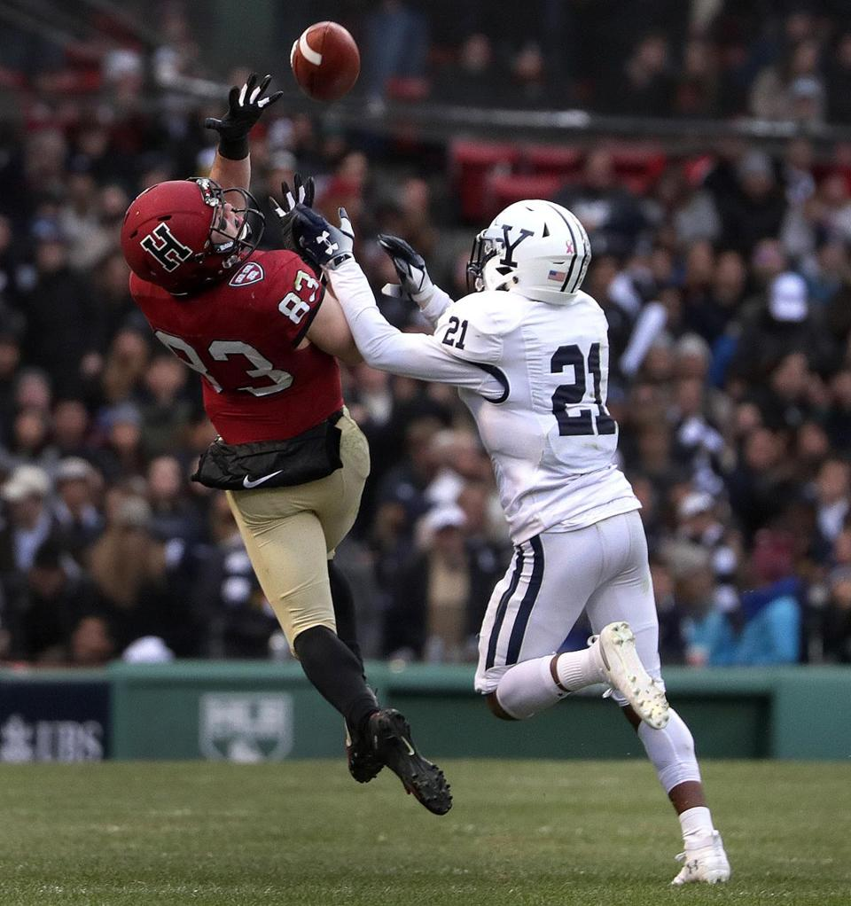 Harvard wide receiver Jack Cook (83) pulls in a long pass reception for a first down during the fourth quarter.