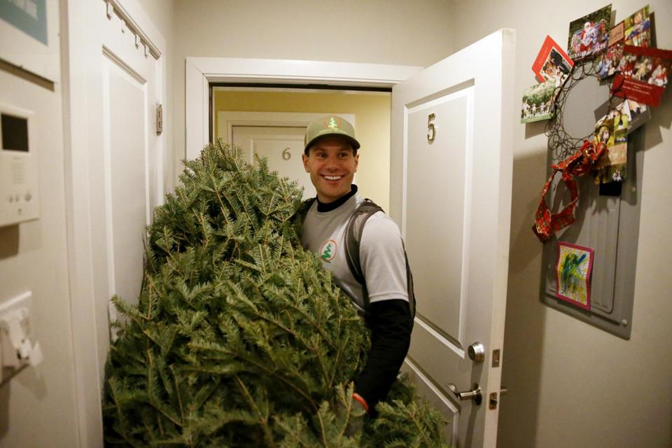 Jeff Feccia was a welcome sight delivering trees in South Boston.